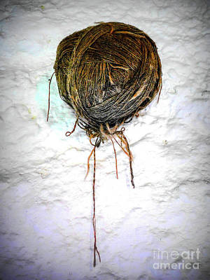 Photograph - Hand Spun Wool On Wall by Lexa Harpell