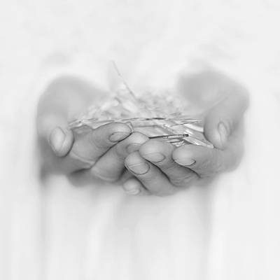 Photograph - Handfull Of Shards by Ana Leko Nikolic
