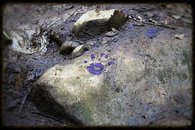 Photograph - Handprint by Pascal Schreier