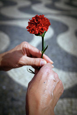 Hands And Carnation Art Print by Carlos Caetano