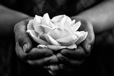 Photograph - Hands Offering Rose In Black And White by Vishwanath Bhat