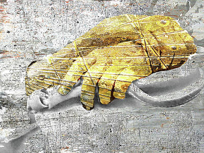 Mixed Media - Hands Study by Tony Rubino