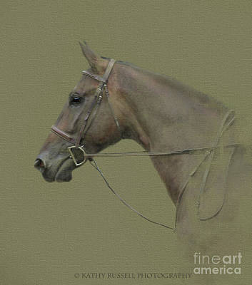 Photograph - Handsome Fellow by Kathy Russell