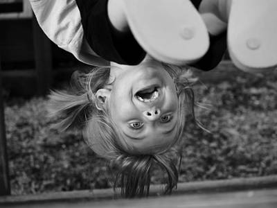 Hangs Upside Down Photograph - Hang by Denise Irving