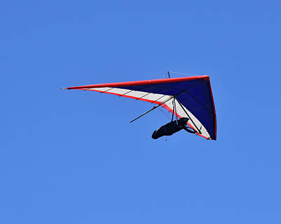 Photograph - Hang Gliding No. 1-1 by Sandy Taylor