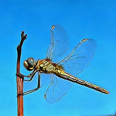 Painting - Hang On In There Artistic Dragonfly by Taiche Acrylic Art