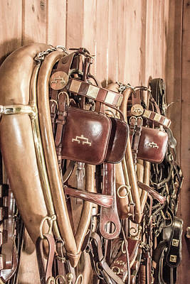 Photograph - Hanging Bridles by Pamela Williams