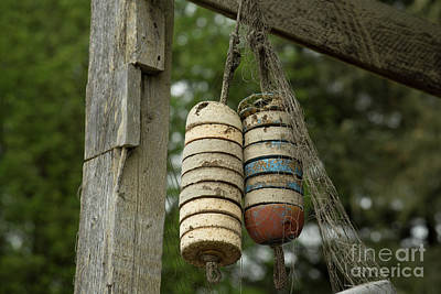 Photograph - Hanging Buoy With Net by Loriannah Hespe