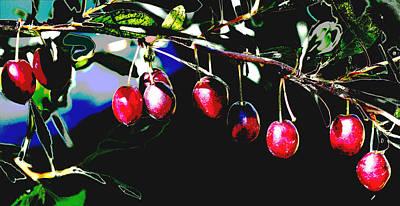 Digital Art - Hanging Cherries Poster by Aliceann Carlton