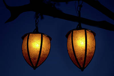 Disney Photograph - Hanging Lanterns by Mark Andrew Thomas