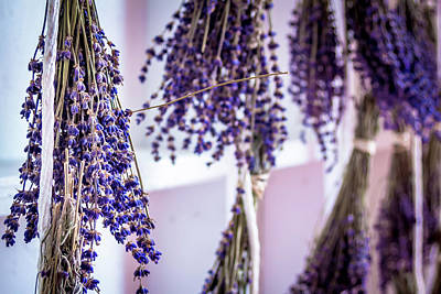 Photograph - Hanging Lavender by Jeanette Fellows