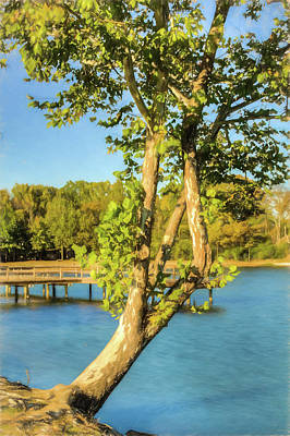 Photograph - Hanging On - Lakeside Landscape by Barry Jones