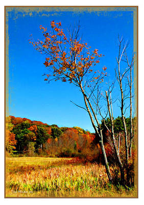 Photograph - Hanging On To Autumn by Joan  Minchak