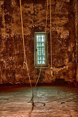 Photograph - Hanging Room by Patricia Schaefer