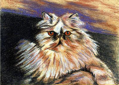 Persian Cat Wall Art - Pastel - Hannah by Marsha Elliott
