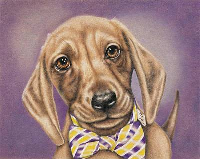 Drawing - Hans The Dachshund by Karrie J Butler