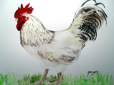 Painting - Hansom Rooster by Carol Grimes