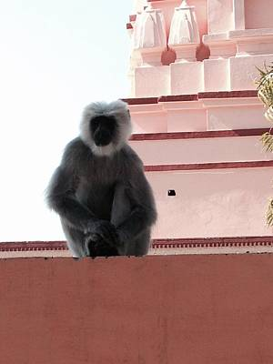 Photograph - Hanuman Guardian by LeLa Becker