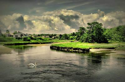 Photograph - Gooch's Creek by Diana Angstadt