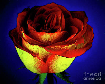 Photograph - Happiness Forever 122617-1 by Ray Shrewsberry