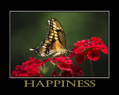 Photograph - Happiness Inspirational Poster Art by Christina Rollo