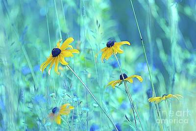 Happiness Is In The Meadows - A111 Art Print by Variance Collections