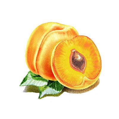 Painting - Happy Apricots  by Irina Sztukowski