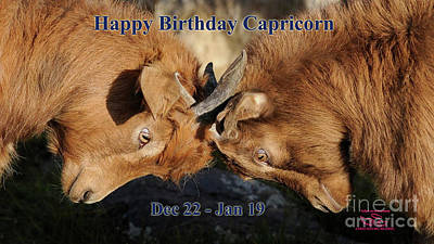 Photograph - Happy Birthday Capricorn by Beauty For God