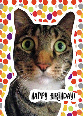 Happy Birthday Cat- Art By Linda Woods Art Print