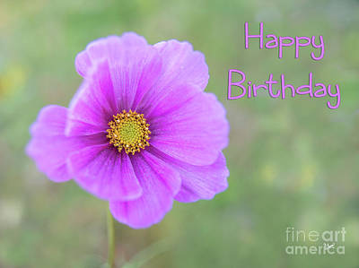 Photograph - Happy Birthday - Flower by Alana Ranney