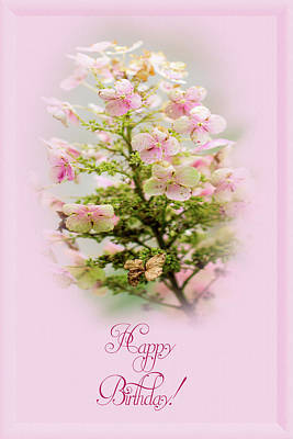 Photograph - Happy Birthday Greeting Hydrangea by Mother Nature