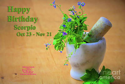 Photograph - Happy Birthday Scorpio by Beauty For God