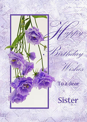 Photograph - Happy Birthday Wishes To A Dear Sister by Sandra Foster