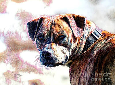 Mixed Media - Happy Bulldog by Bill And Deb Hayes