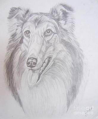 Drawing - Happy Collie by Joy Ballack