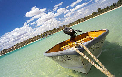 Photograph - Happy Dinghy by T Brian Jones