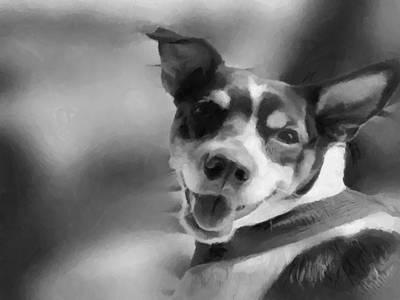 Terrier Digital Art - Happy Dog by Teresa Henry
