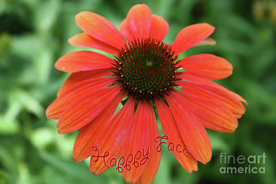 Photograph - Happy Face Flower by Barbara Dean
