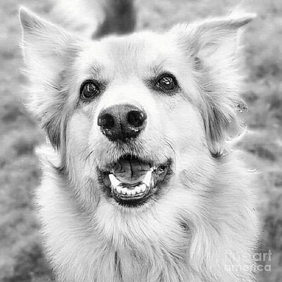 Mixed Media - Happy Face In B And W by Abbie Shores