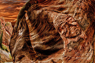 Photograph - Happy Face In The Zion Riverside Walk by Blake Richards