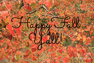 Photograph - Happy Fall  by Carol Groenen