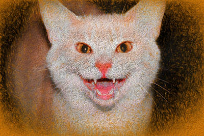 Photograph - Happy For Spring Cat II by David Yocum
