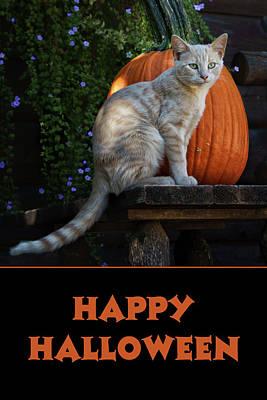 Photograph - Happy Halloween - Cat - Pumpkin by Nikolyn McDonald