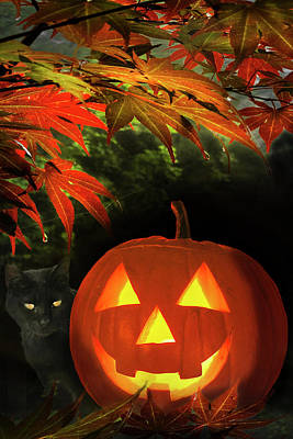 Photograph - Happy Halloween by Debra and Dave Vanderlaan