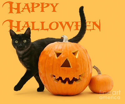 Photograph - Happy Halloween by Warren Photographic