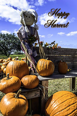 Photograph - Happy Harvest by Leticia Latocki