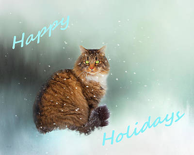 Photograph - Happy Holiday Cat by Theresa Tahara
