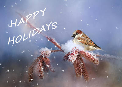 Photograph - Happy Holiday Sparrow by Theresa Tahara
