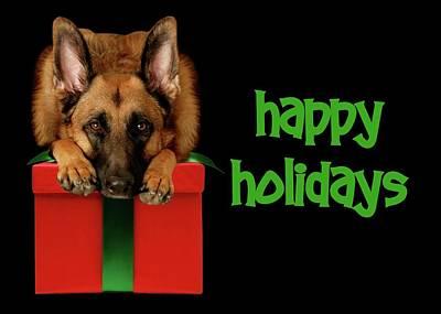 Photograph - Happy Holidays Card by Angie Tirado