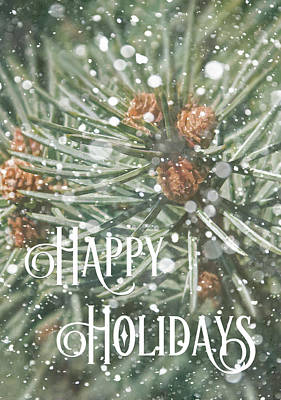 Photograph - Happy Holidays by HH Photography of Florida